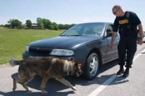 Drug Dog Car Sniff