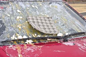 egged car